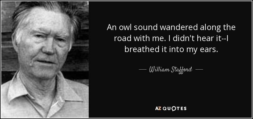An owl sound wandered along the road with me. I didn't hear it--I breathed it into my ears. - William Stafford
