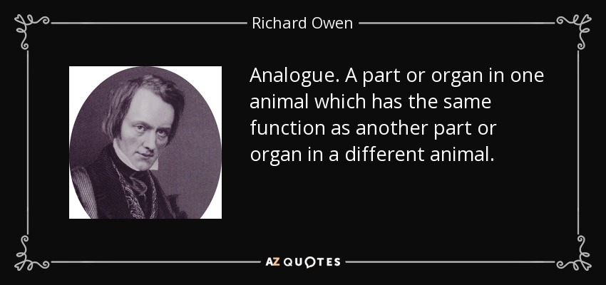 Analogue. A part or organ in one animal which has the same function as another part or organ in a different animal. - Richard Owen
