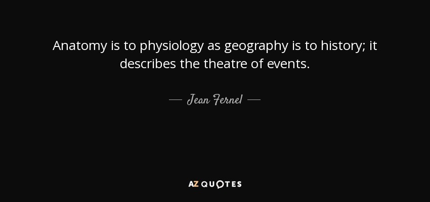 Anatomy is to physiology as geography is to history; it describes the theatre of events. - Jean Fernel