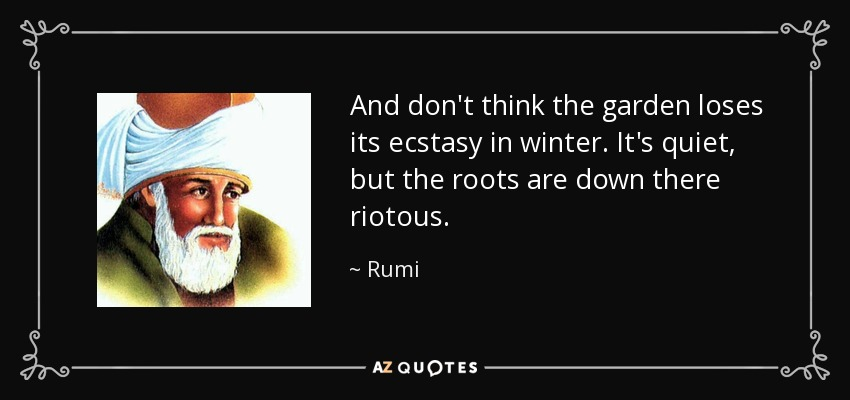 And don't think the garden loses its ecstasy in winter. It's quiet, but the roots are down there riotous. - Rumi