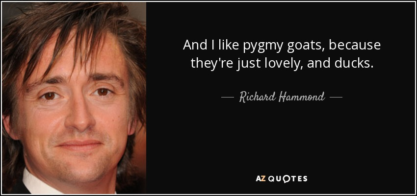 And I like pygmy goats, because they're just lovely, and ducks. - Richard Hammond