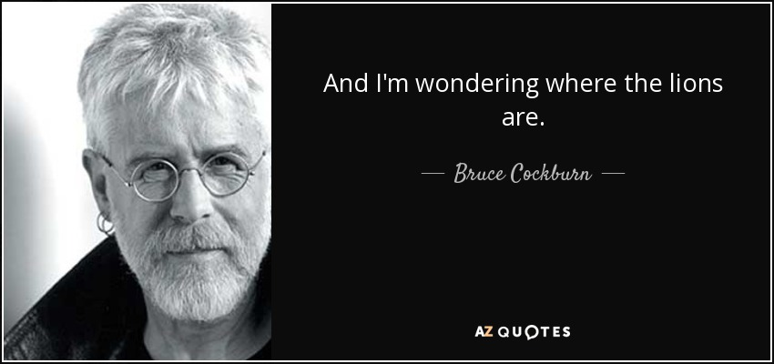 Bruce cockburn wondering where the lions are lyrics