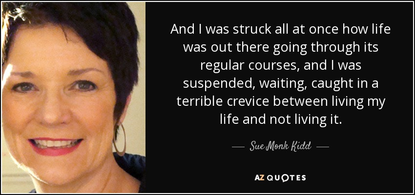 And I was struck all at once how life was out there going through its regular courses, and I was suspended, waiting, caught in a terrible crevice between living my life and not living it. - Sue Monk Kidd