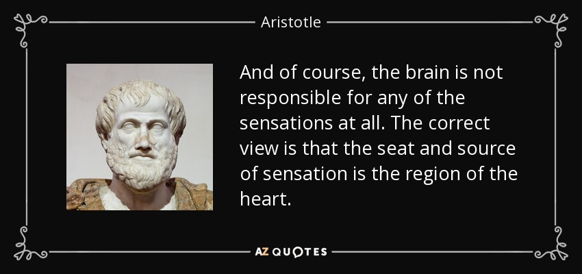 And of course, the brain is not responsible for any of the sensations at all. The correct view is that the seat and source of sensation is the region of the heart. - Aristotle