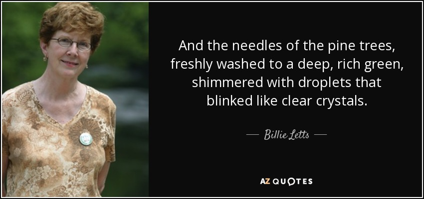 And the needles of the pine trees, freshly washed to a deep, rich green, shimmered with droplets that blinked like clear crystals. - Billie Letts