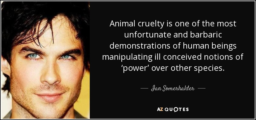 Ian Somerhalder Quote Animal Cruelty Is One Of The Most Unfortunate Cool Animal Abuse Quotes
