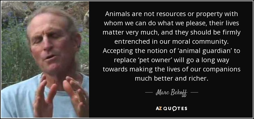 Animals are not resources or property with whom we can do what we please, their lives matter very much, and they should be firmly entrenched in our moral community. Accepting the notion of 'animal guardian' to replace 'pet owner' will go a long way towards making the lives of our companions much better and richer. - Marc Bekoff