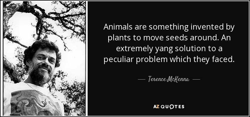 Animals are something invented by plants to move seeds around. An extremely yang solution to a peculiar problem which they faced. - Terence McKenna