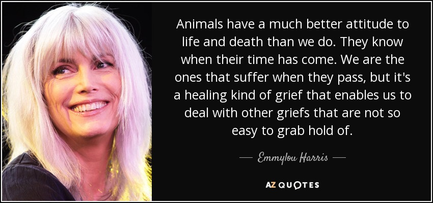 Animals have a much better attitude to life and death than we do. They know when their time has come. We are the ones that suffer when they pass, but it's a healing kind of grief that enables us to deal with other griefs that are not so easy to grab hold of. - Emmylou Harris