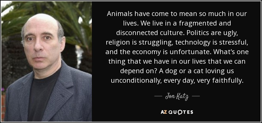 Animals have come to mean so much in our lives. We live in a fragmented and disconnected culture. Politics are ugly, religion is struggling, technology is stressful, and the economy is unfortunate. What's one thing that we have in our lives that we can depend on? A dog or a cat loving us unconditionally , every day, very faithfully. - Jon Katz