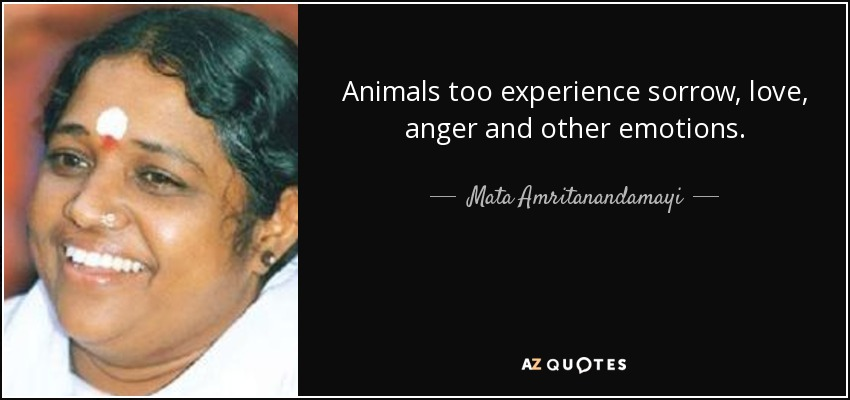 Animals too experience sorrow, love, anger and other emotions. - Mata Amritanandamayi