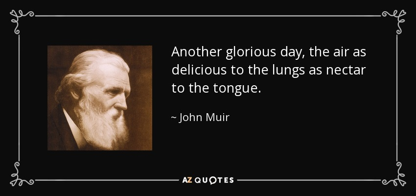 Another glorious day, the air as delicious to the lungs as nectar to the tongue. - John Muir