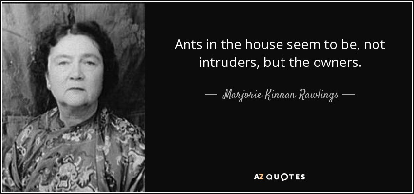 Ants in the house seem to be, not intruders, but the owners. - Marjorie Kinnan Rawlings