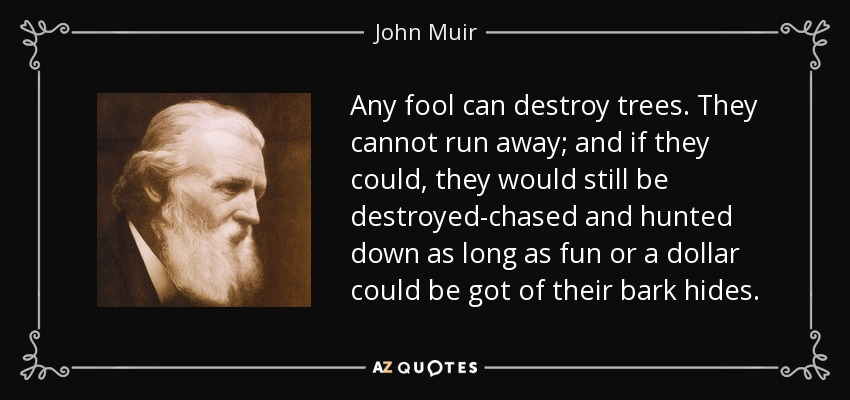 Any fool can destroy trees. They cannot run away; and if they could, they would still be destroyed-chased and hunted down as long as fun or a dollar could be got of their bark hides. - John Muir