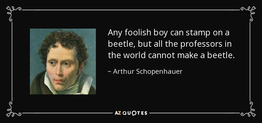 Any foolish boy can stamp on a beetle, but all the professors in the world cannot make a beetle. - Arthur Schopenhauer