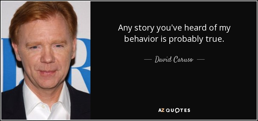 Any story you've heard of my behavior is probably true. - David Caruso