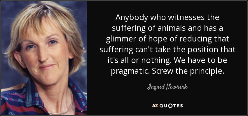 Anybody who witnesses the suffering of animals and has a glimmer of hope of reducing that suffering can't take the position that it's all or nothing. We have to be pragmatic. Screw the principle. - Ingrid Newkirk