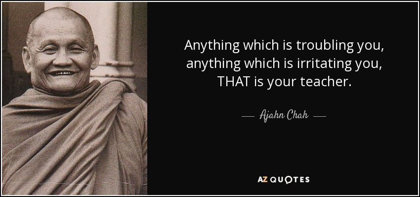 Anything which is troubling you, anything which is irritating you, THAT is your teacher. - Ajahn Chah