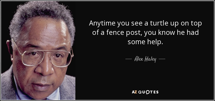 Anytime you see a turtle up on top of a fence post, you know he had some help. - Alex Haley