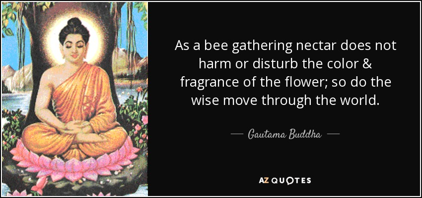 As a bee gathering nectar does not harm or disturb the color & fragrance of the flower; so do the wise move through the world. - Gautama Buddha