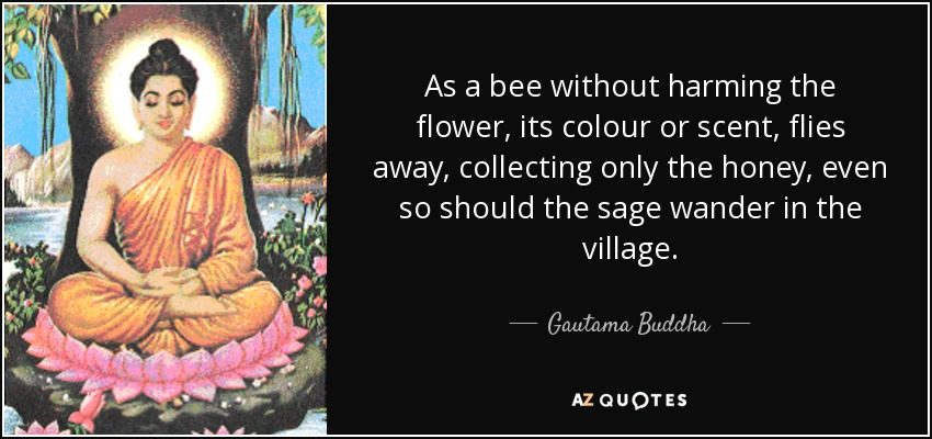 As a bee without harming the flower, its colour or scent, flies away, collecting only the honey, even so should the sage wander in the village. - Gautama Buddha