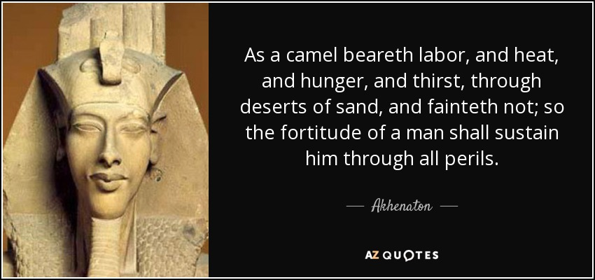 As a camel beareth labor, and heat, and hunger, and thirst, through deserts of sand, and fainteth not; so the fortitude of a man shall sustain him through all perils. - Akhenaton
