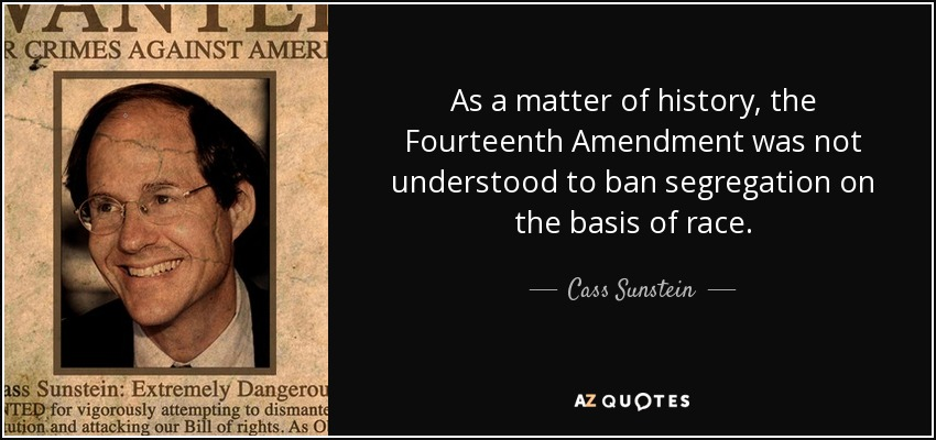 As a matter of history, the Fourteenth Amendment was not understood to ban segregation on the basis of race. - Cass Sunstein