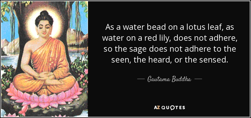 As a water bead on a lotus leaf, as water on a red lily, does not adhere, so the sage does not adhere to the seen, the heard, or the sensed. - Gautama Buddha
