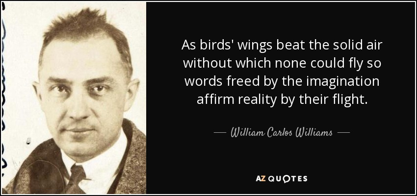 As birds' wings beat the solid air without which none could fly so words freed by the imagination affirm reality by their flight. - William Carlos Williams
