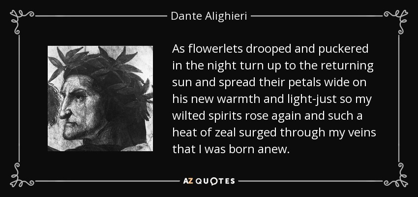 As flowerlets drooped and puckered in the night turn up to the returning sun and spread their petals wide on his new warmth and light-just so my wilted spirits rose again and such a heat of zeal surged through my veins that I was born anew. - Dante Alighieri