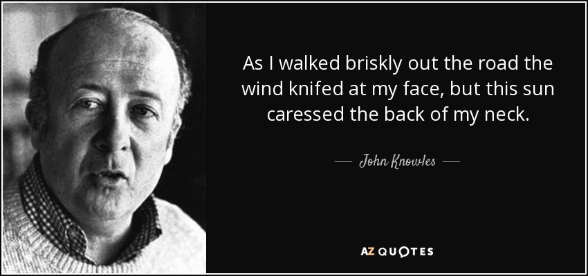As I walked briskly out the road the wind knifed at my face, but this sun caressed the back of my neck. - John Knowles
