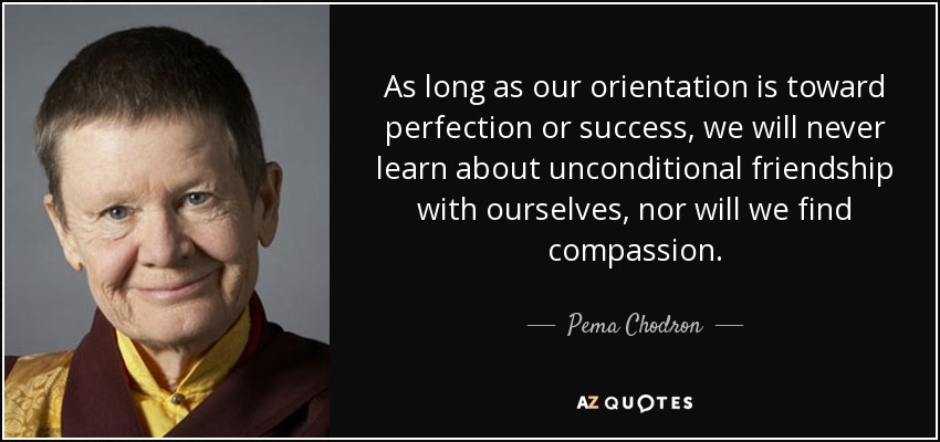 As long as our orientation is toward perfection or success, we will never learn about unconditional friendship with ourselves, nor will we find compassion. - Pema Chodron