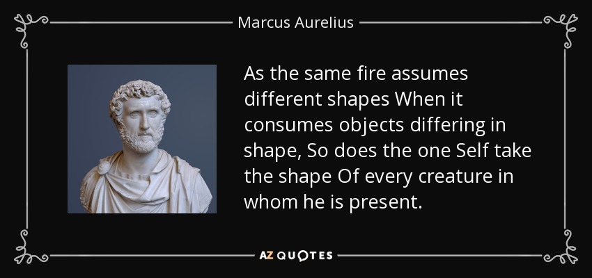 As the same fire assumes different shapes When it consumes objects differing in shape, So does the one Self take the shape Of every creature in whom he is present. - Marcus Aurelius