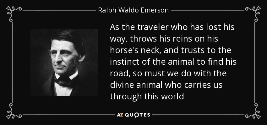 As the traveler who has lost his way, throws his reins on his horse's neck, and trusts to the instinct of the animal to find his road, so must we do with the divine animal who carries us through this world - Ralph Waldo Emerson