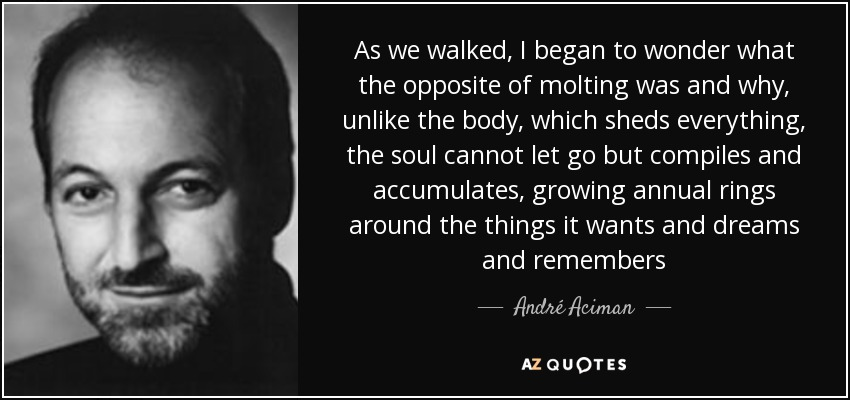 As we walked, I began to wonder what the opposite of molting was and why, unlike the body, which sheds everything, the soul cannot let go but compiles and accumulates, growing annual rings around the things it wants and dreams and remembers - André Aciman