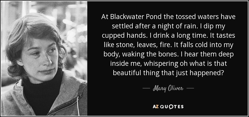 At Blackwater Pond the tossed waters have settled after a night of rain. I dip my cupped hands. I drink a long time. It tastes like stone, leaves, fire. It falls cold into my body, waking the bones. I hear them deep inside me, whispering oh what is that beautiful thing that just happened? - Mary Oliver