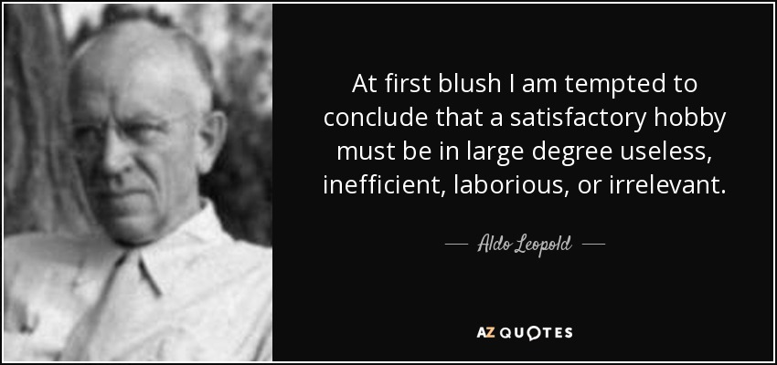 At first blush I am tempted to conclude that a satisfactory hobby must be in large degree useless, inefficient, laborious, or irrelevant. - Aldo Leopold