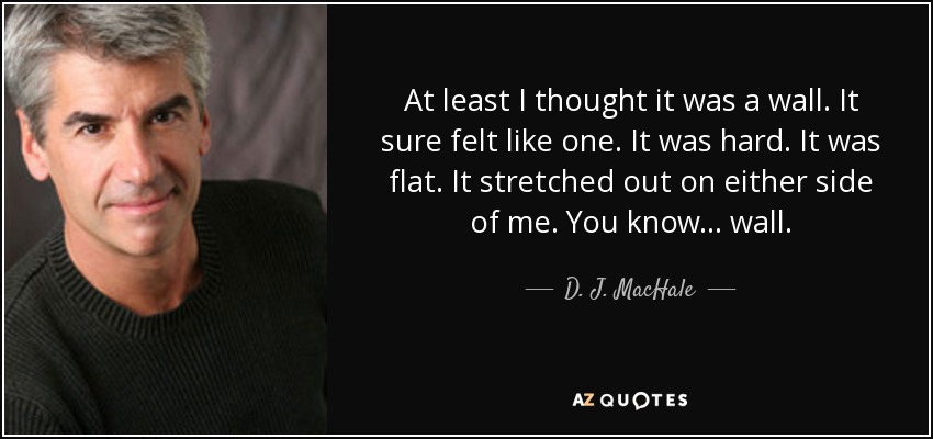 At least I thought it was a wall. It sure felt like one. It was hard. It was flat. It stretched out on either side of me. You know... wall. - D. J. MacHale