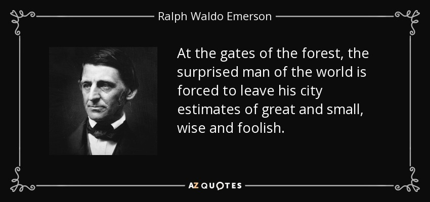 At the gates of the forest, the surprised man of the world is forced to leave his city estimates of great and small, wise and foolish. - Ralph Waldo Emerson
