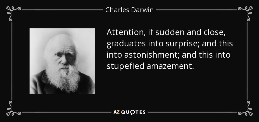 Attention, if sudden and close, graduates into surprise; and this into astonishment; and this into stupefied amazement. - Charles Darwin