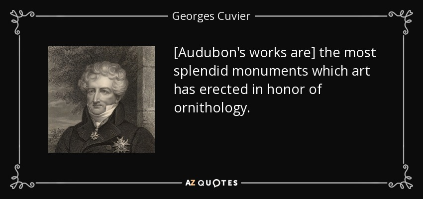 [Audubon's works are] the most splendid monuments which art has erected in honor of ornithology. - Georges Cuvier