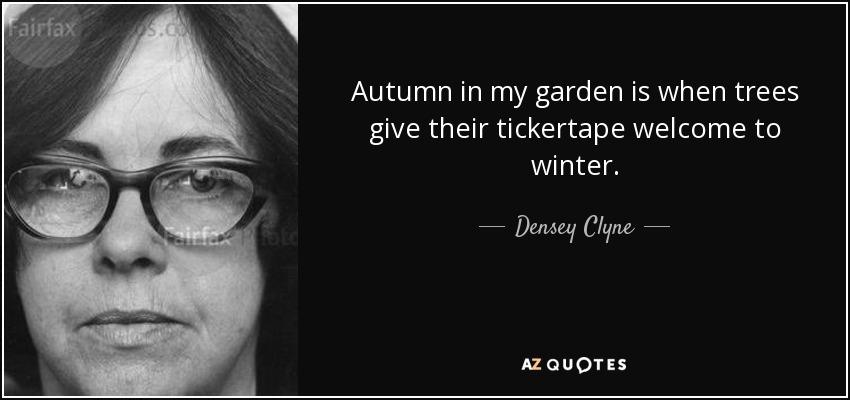 Autumn in my garden is when trees give their tickertape welcome to winter. - Densey Clyne