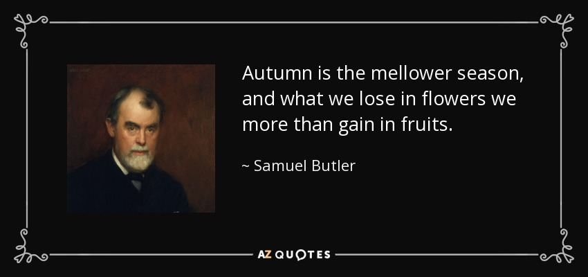 Autumn is the mellower season, and what we lose in flowers we more than gain in fruits. - Samuel Butler