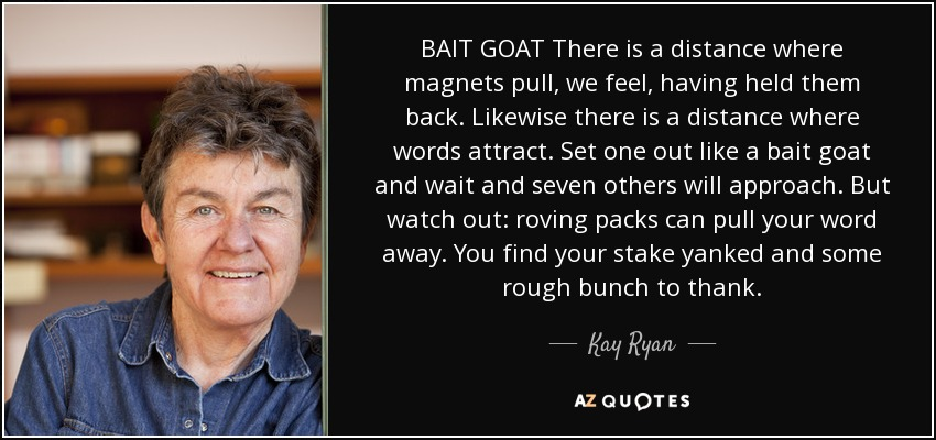 BAIT GOAT There is a distance where magnets pull, we feel, having held them back. Likewise there is a distance where words attract. Set one out like a bait goat and wait and seven others will approach. But watch out: roving packs can pull your word away. You find your stake yanked and some rough bunch to thank. - Kay Ryan