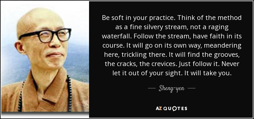 Be soft in your practice. Think of the method as a fine silvery stream, not a raging waterfall. Follow the stream, have faith in its course. It will go on its own way, meandering here, trickling there. It will find the grooves, the cracks, the crevices. Just follow it. Never let it out of your sight. It will take you. - Sheng-yen