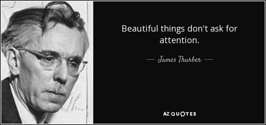 james thurber quote beautiful things don 39 t ask for attention. Black Bedroom Furniture Sets. Home Design Ideas