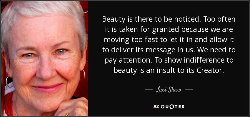 Beauty is there to be noticed. Too often it is taken for granted because we are moving too fast to let it in and allow it to deliver its message in us. We need to pay attention. To show indifference to beauty is an insult to its Creator. - Luci Shaw