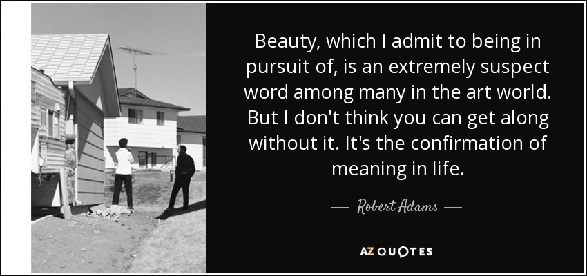 Beauty, which I admit to being in pursuit of, is an extremely suspect word among many in the art world. But I don't think you can get along without it. It's the confirmation of meaning in life. - Robert Adams