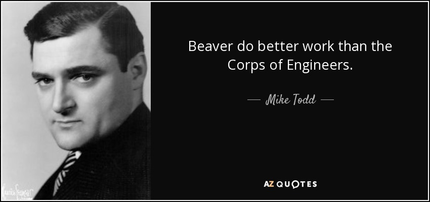 Beaver do better work than the Corps of Engineers. - Mike Todd