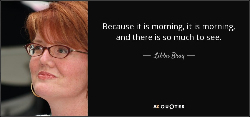 Because it is morning, it is morning, and there is so much to see. - Libba Bray